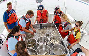 "Dr. Troy Tuckey of VIMS, seen here on the research vessel Tidewater, sorts just-netted marine life by species so that students of RCC's ""Coastal Ecology"" course can identify, count, and measure them."
