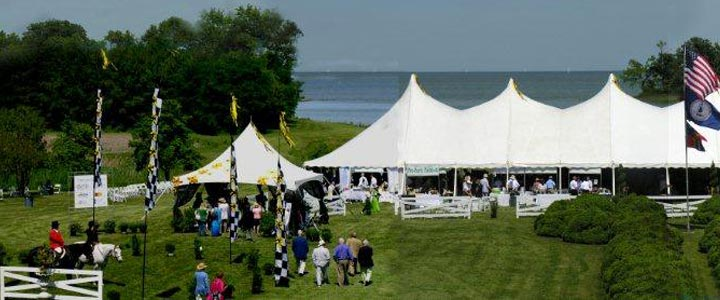 The Preakness Party